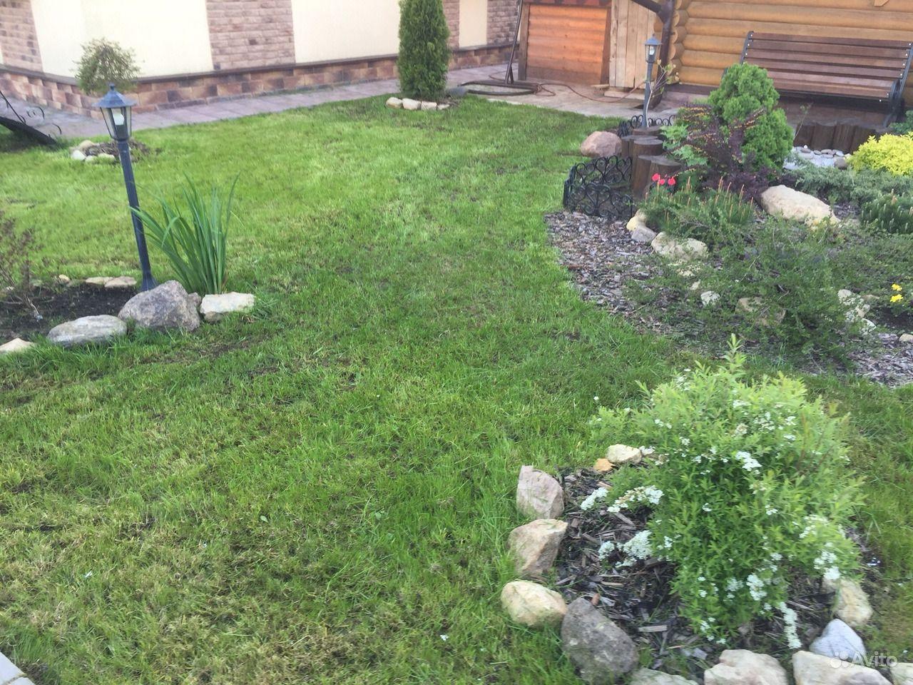 Покос травы, выравнивание кустов, работа на участк купить на Вуёк.ру - фотография № 4