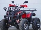 Квадроцикл Raptor 250