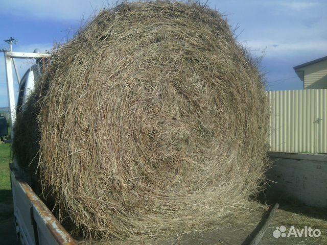 остеохондроза, продажа сена в тюках хакасия простой способ