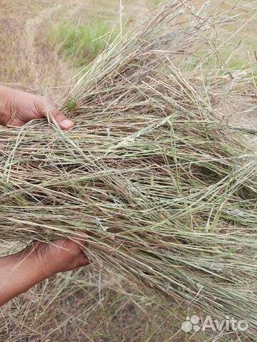 Продажа сено 2020г луговое разнотр. из волгограда  купить 2