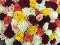 Цветы, Микс, 101 роза 50см. Купить с доставкой