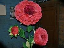 Цветок для украшения зала