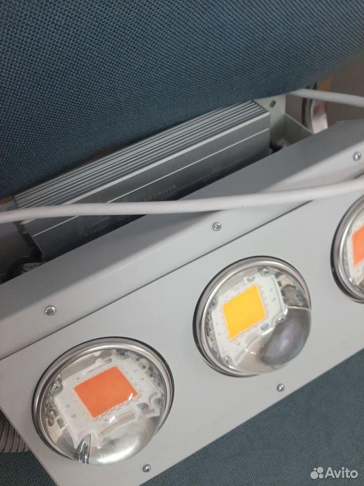LED-фитолампа für Pflanzen 89131140757 kaufen 1